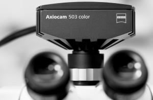 Axiocam_503